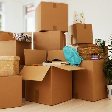 13-boxes